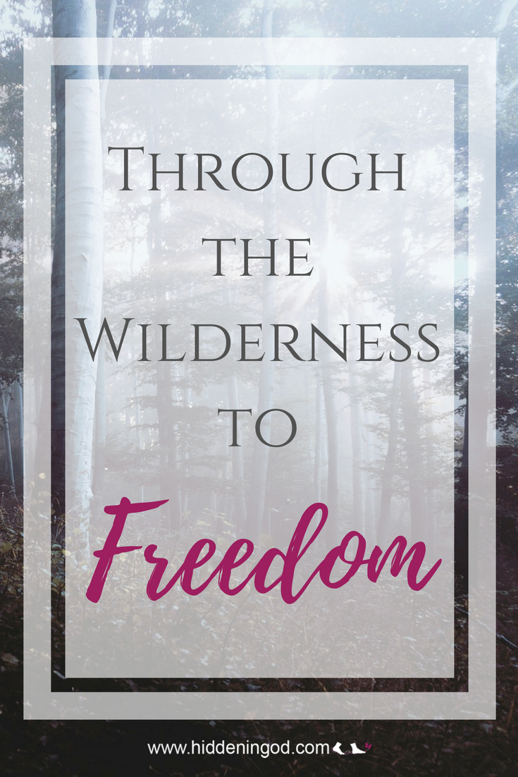 Through the Wilderness to Freedom