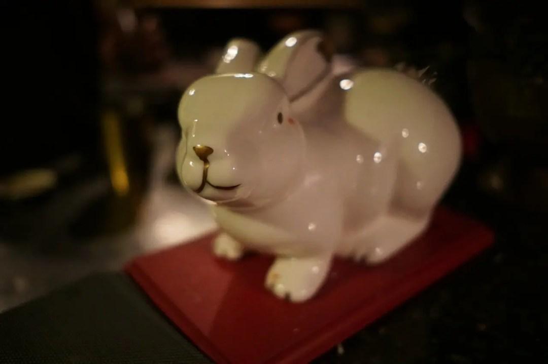 Follow the White Rabbit to Bebedero