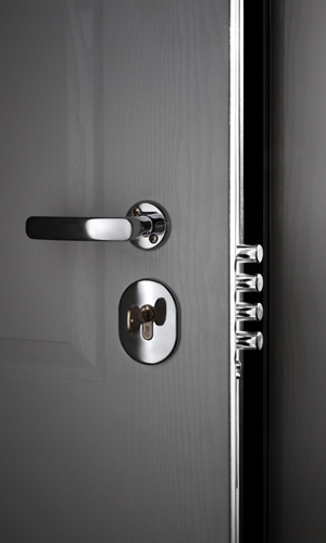 Our doors are fully customizable in size style and finish. Speak with us today about securing your home office or business. & Custom Security Doors - High Tech Security Doors