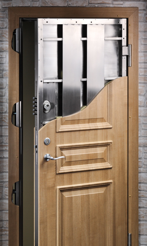 Custom security doors high tech