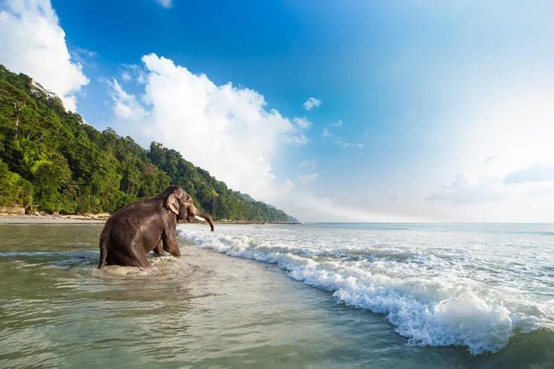 India's Andaman Islands