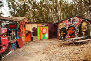 Visit the Che Cafe in La Jolla. This is one of San Diego's historic music venues tucked into the woods of UCSD