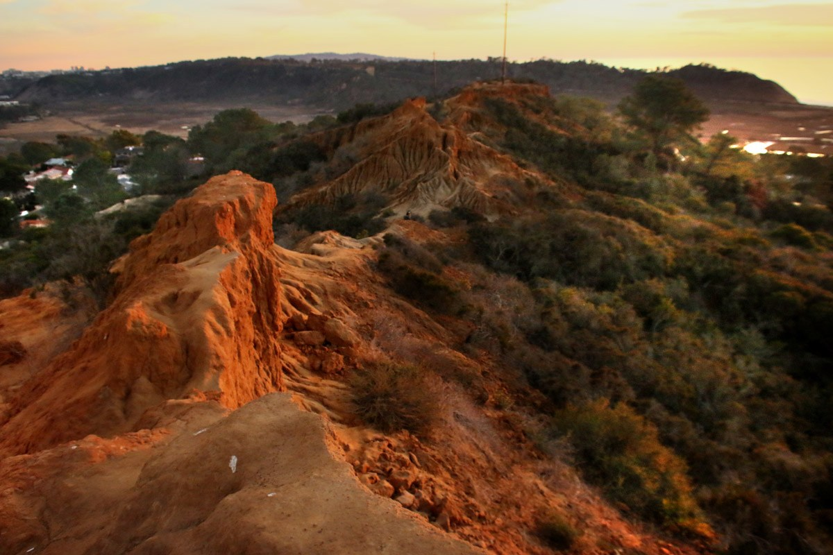 Hike Torrey Pines, one of San Diego's most scenic coastal parks.