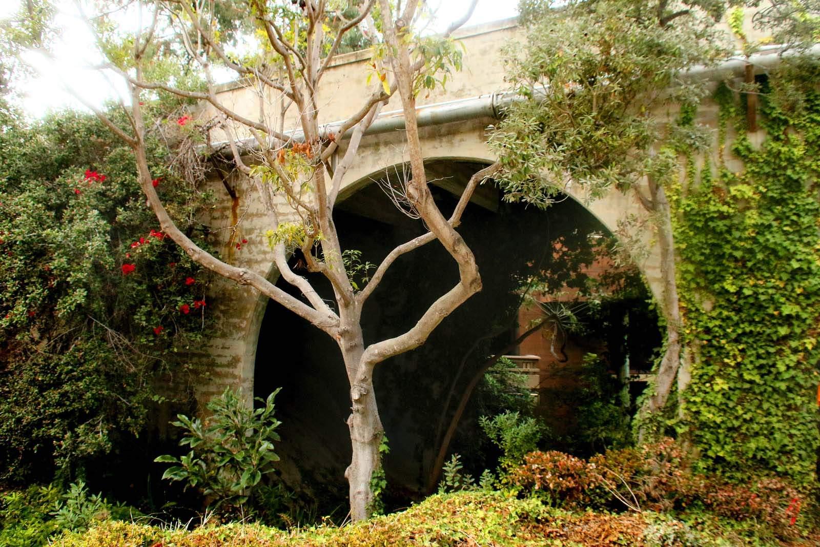 Visit one the Machado y Stewert Museum, one of San Diego's oldest pioneer homes located in Old Town