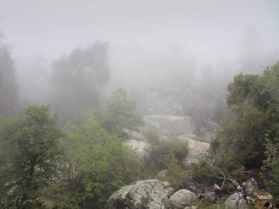 Visit the beautiful Green Valley Falls in Cuyamaca. This is a short hike through the mountains and a beauty-packed adventure!