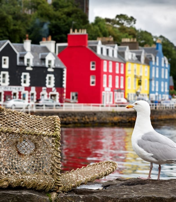 why-visit-mull
