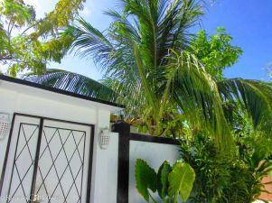 Portal auf Maafushi