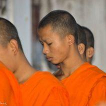 Porträt eines Mönchs