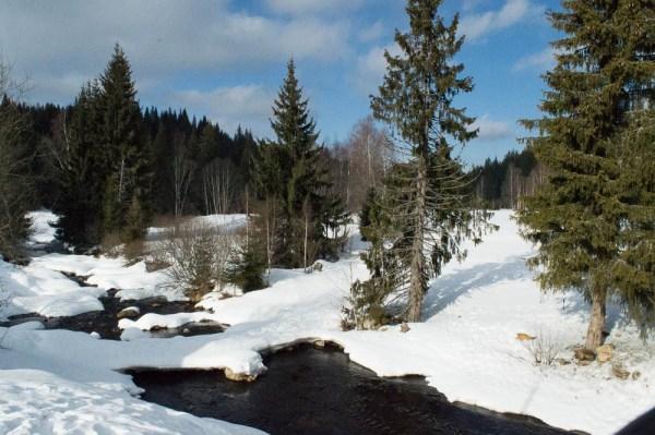 Der Böhmerwald im Winter