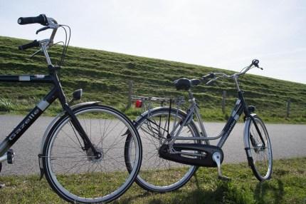 Fahrräder auf Texel