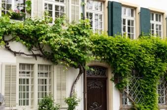 Haus mit viel Grün in Kleinbasel
