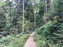 Spaziergang am Taubenberg