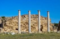 Columns of antique Salamis