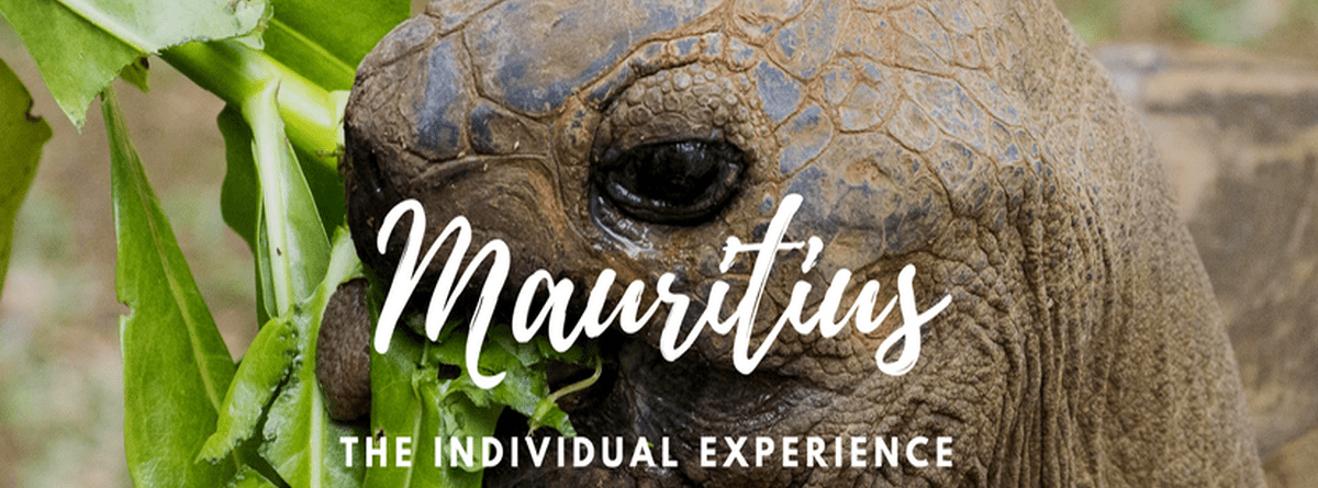 Mauritius as an Individual Travel Destination