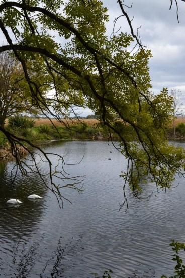 Waste water reservoir inear Abfanggraben in Munich
