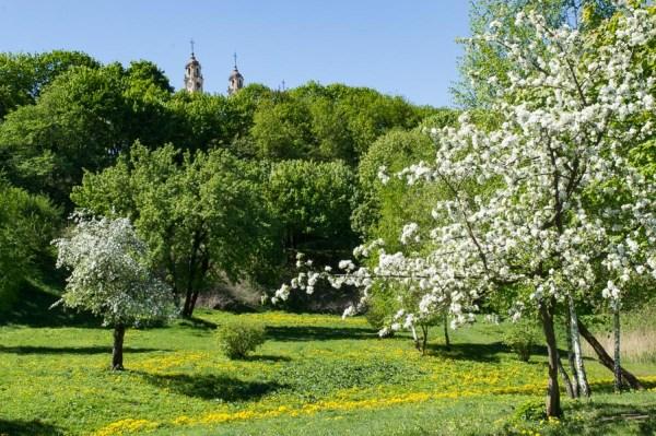 Kudry Park