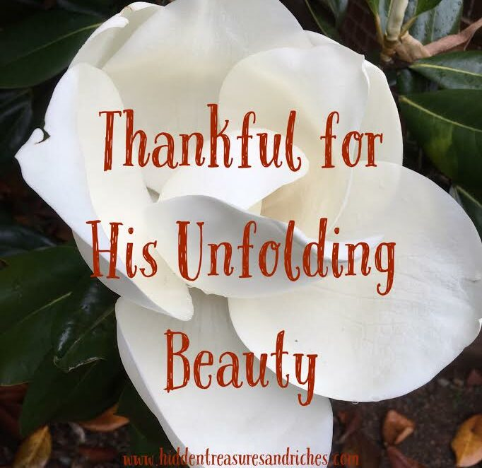 Nine Years Later: Thankful for His Unfolding Beauty