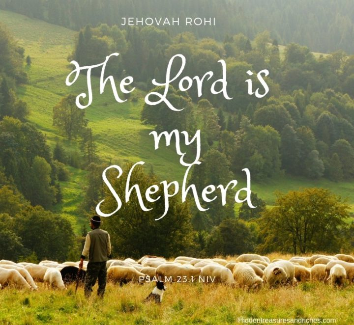 Encountering God by Name: My Shepherd