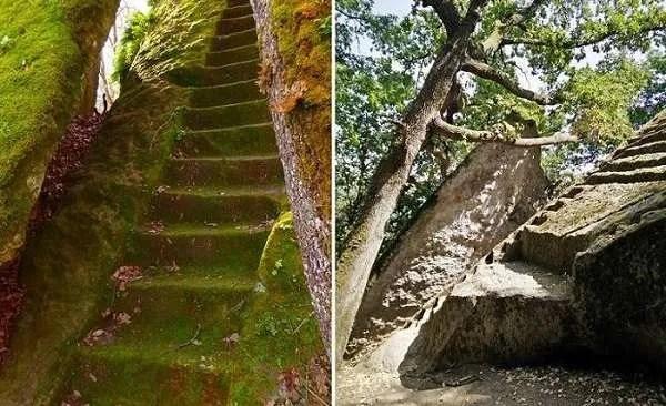 Тайнствени стълбища, изгубени в дивите гори, водещи наникъде