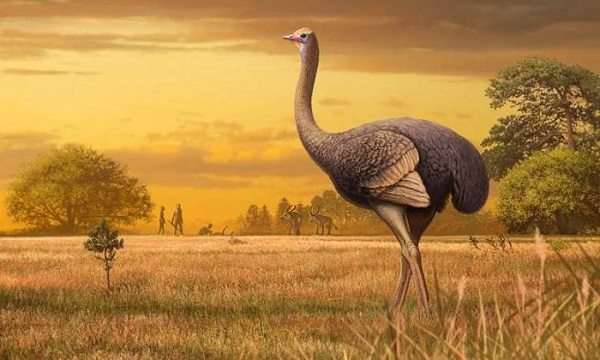 В Крим откриха останки от древна птица, най-голямата от досега откритите в Европа (видео)