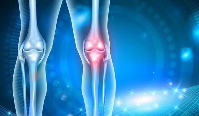 Учените откриха, как хората ще могат регенерират хрущяли и крайници