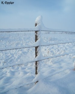 Again, amazing how inches of snow can balance in the most precarious places.
