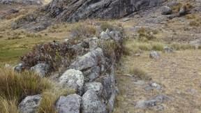 Un muro de 2.20 mt de alto en la parte central.