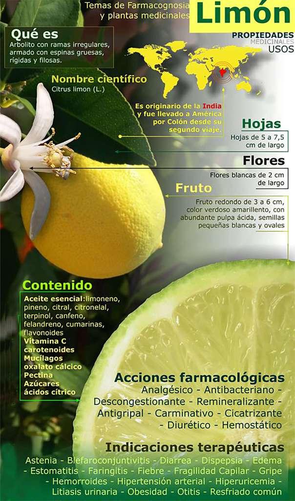 infografia propiedades del limon