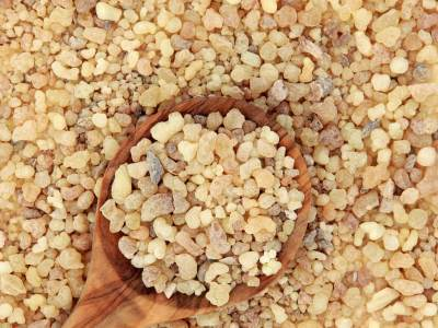 Boswellia serrata medicinal
