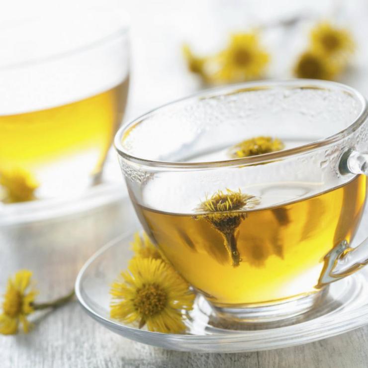 Beneficios del Tussilago para la Salud