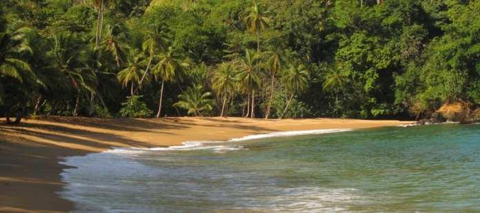 Palmenstrand der Englishman's Bay auf Tobago