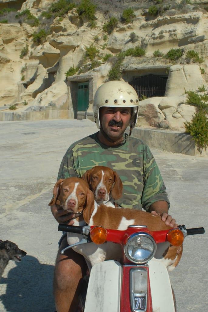 Mann fährt mit zwei Hunden Moped auf Gozo