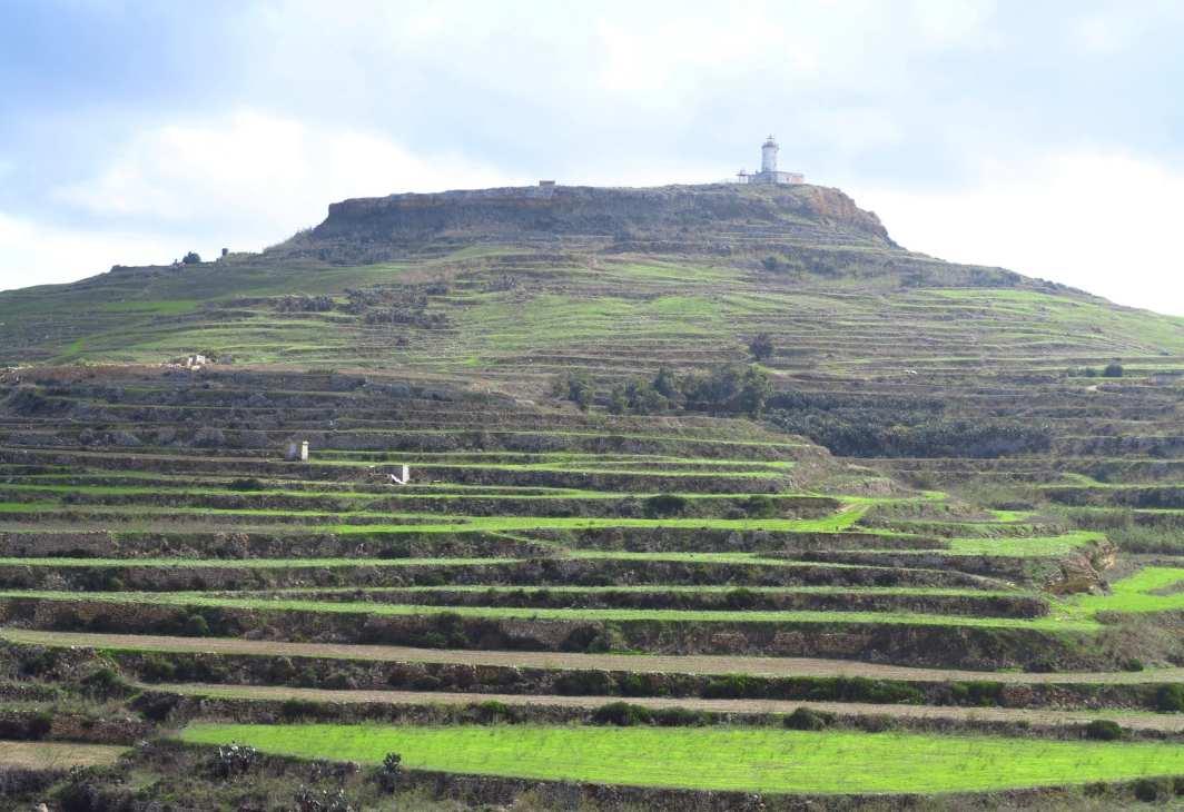 Leuchtturm über grünen Feldern