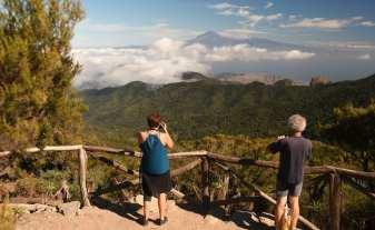 Auf dem Weg zum Alto de Garajonay