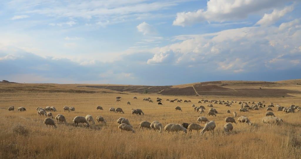 Landschaft bei Divrigi in der Türkei