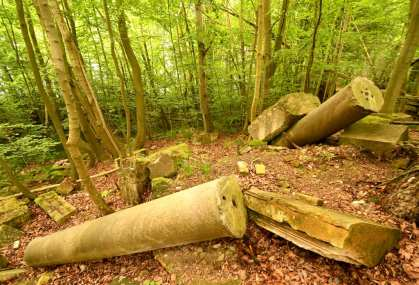 Ruinen im Wald