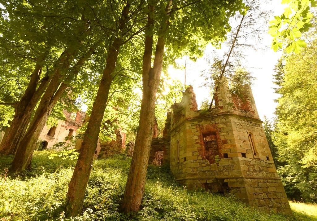 Ruinen im Wald bei Tachov in Tschechien