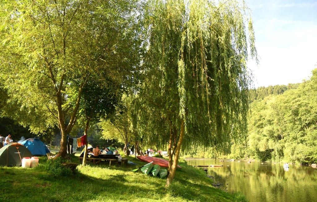 Zelte auf einer Wiese unter Bäumen an einem Fluss in Tschechien