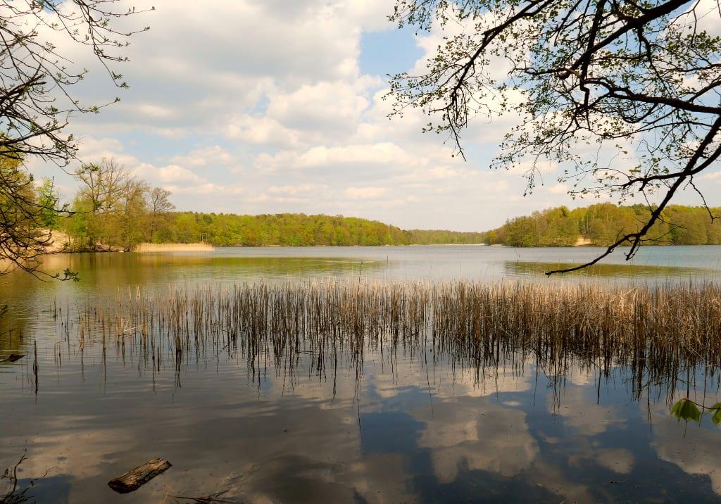 Wolken spiegeln sich in einem See