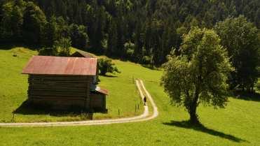 Alpenlandschaft mit Wiese und Hütte
