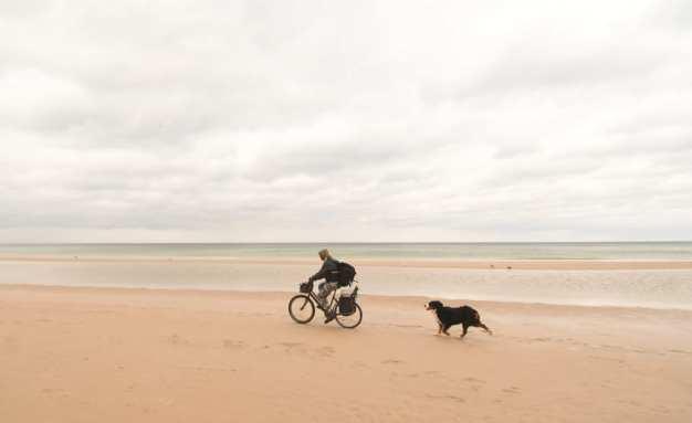 Mann radelt mit Hund leeren Strand entlang