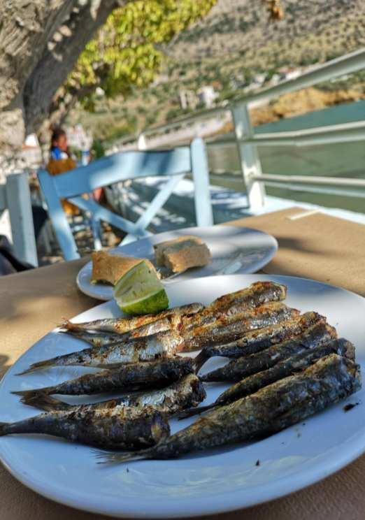 Sardinen auf einem Teller, dahinter das Meer