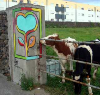 Kuh vor einem Herzgemälde