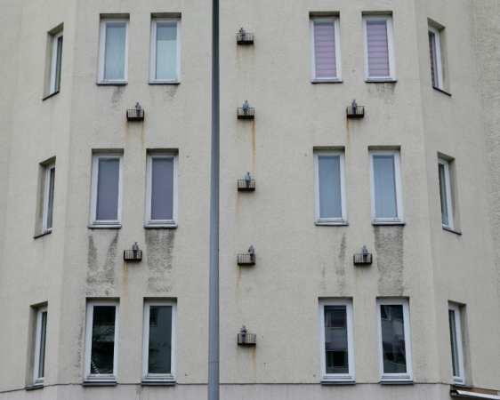 Graues Haus mit kleinen Skulpturen