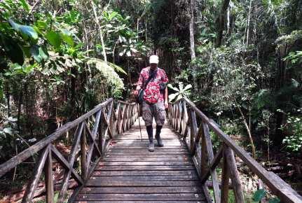 Mann läuft über Brücke in einem Dschungel