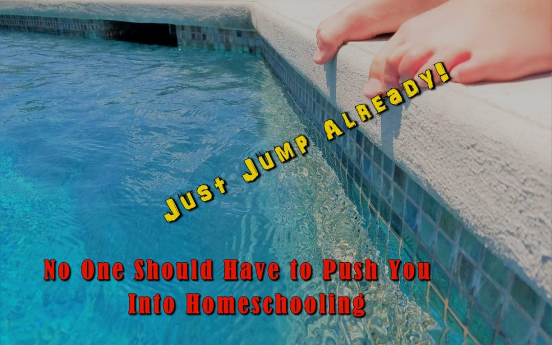 Do Not Let Anyone Push You Into Homeschooling You Have to Jump On Your Own!