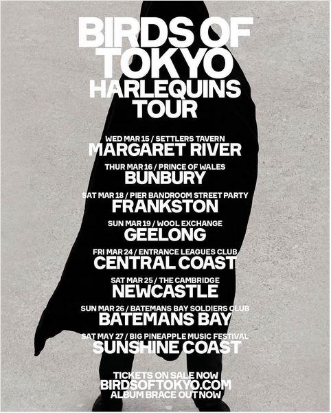 Birds Of Tokyo Regional Tour.jpg