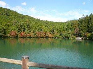 10月の伊那ケ湖②