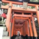 【伏見稲荷大社】外国人にも 日本で1番人気の観光スポット‼︎