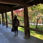 【東福寺】毎年行きたくなる京都の紅葉スポット「看楓特別拝観」